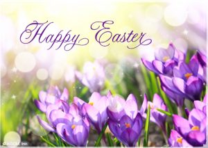 Happy Easter. Image has purple flowers. Post for Easter holidays.